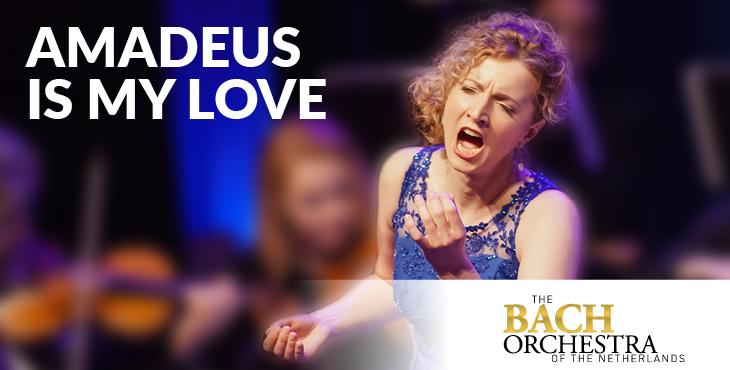 Klassieke concerten - Amadeus is my love